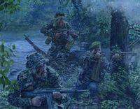Navy SEALs, Vietnam