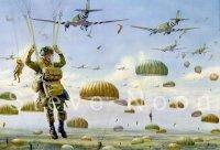 Operation Market Garden 1944, Drop Zone T, Groesbeek Heights.