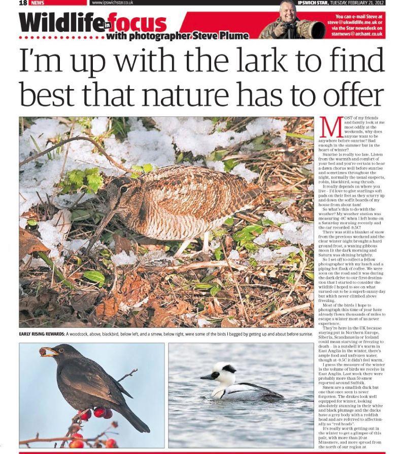 Steve Plume 21 Feb 2012 page 1