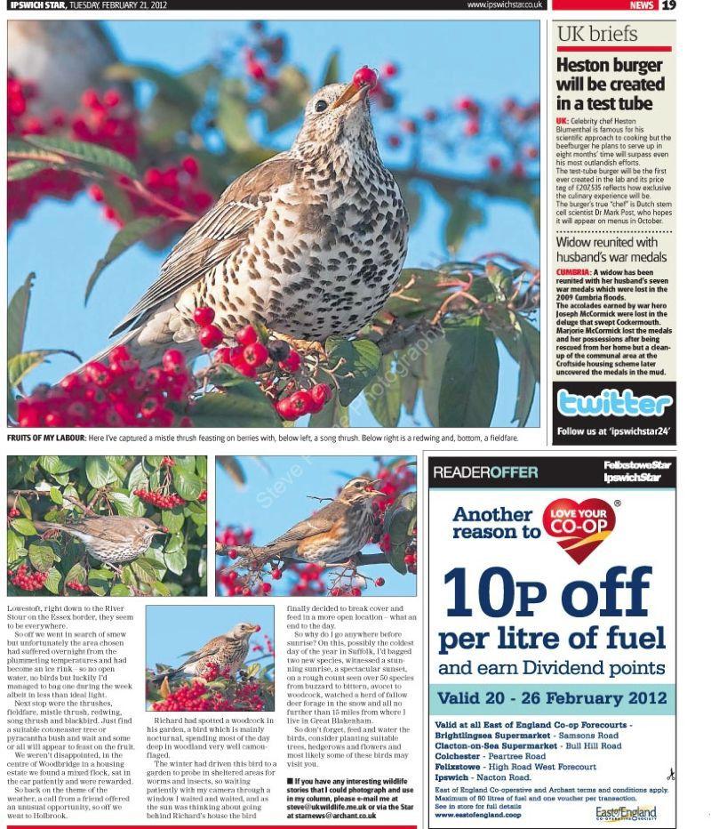Steve Plume 21 Feb 2012 page 2
