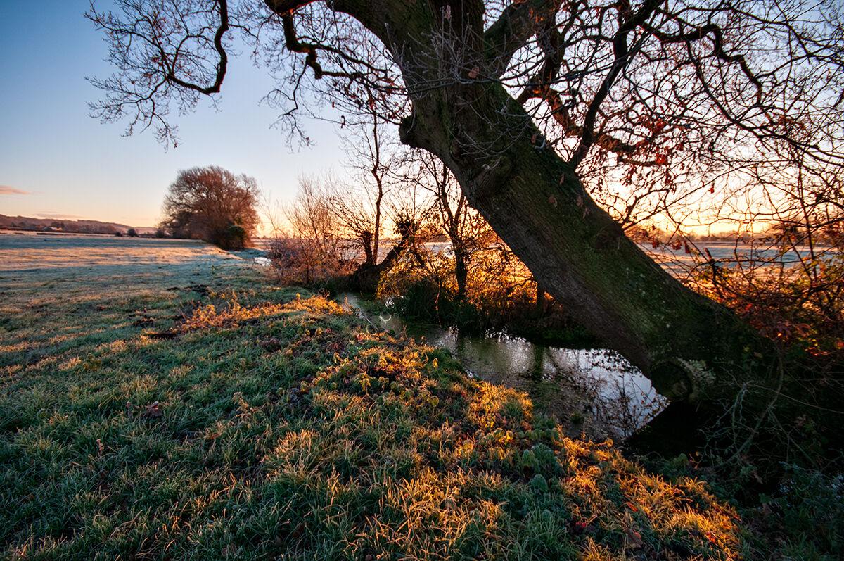 December Sunrise II