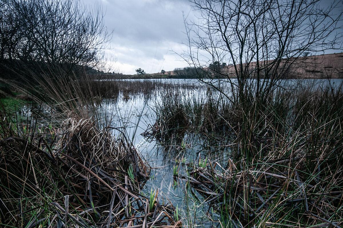 Winter Mendips - Priddy Pond