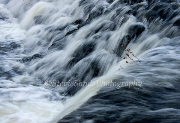 Scotland, River Cart, Pollok Park, Glasgow