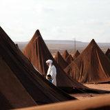 Moroccan Festival Sahara Desert
