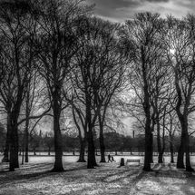 meadows in snow 3