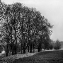 holyrood park 1