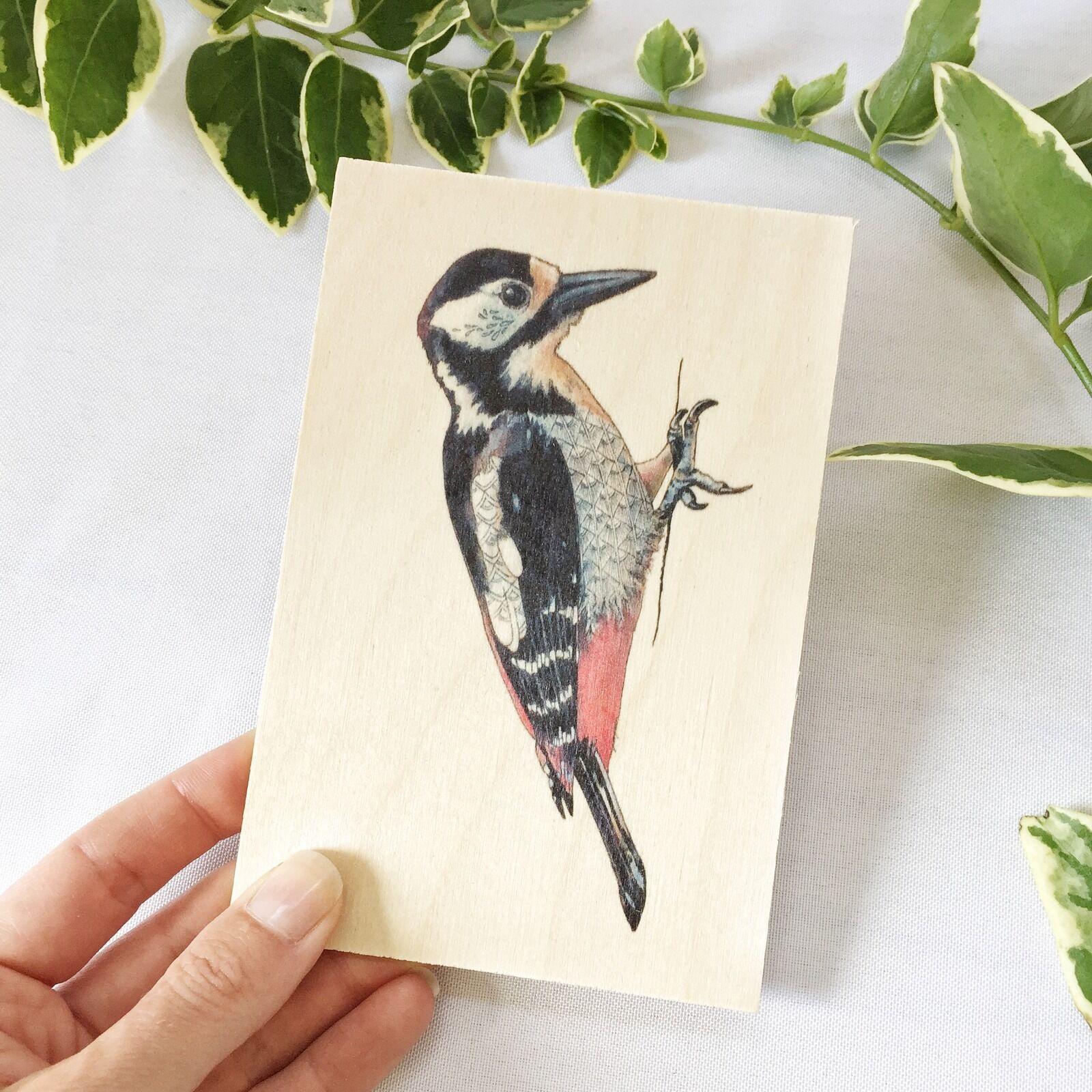 Woodpecker Wooden Postcard
