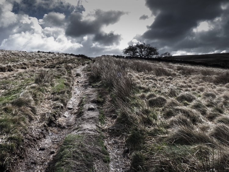 The path to Great Hill from White Coppice