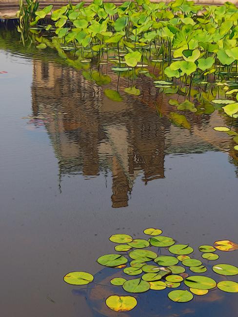 Biltmore Reflection