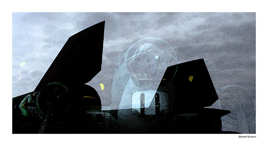 Blackbird Reflection Duxford