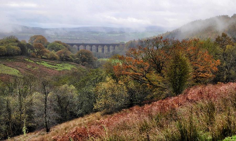 Cynghordy Mist