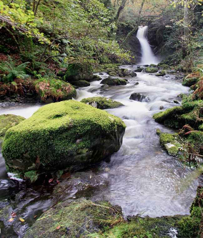 Dolgoch Falls