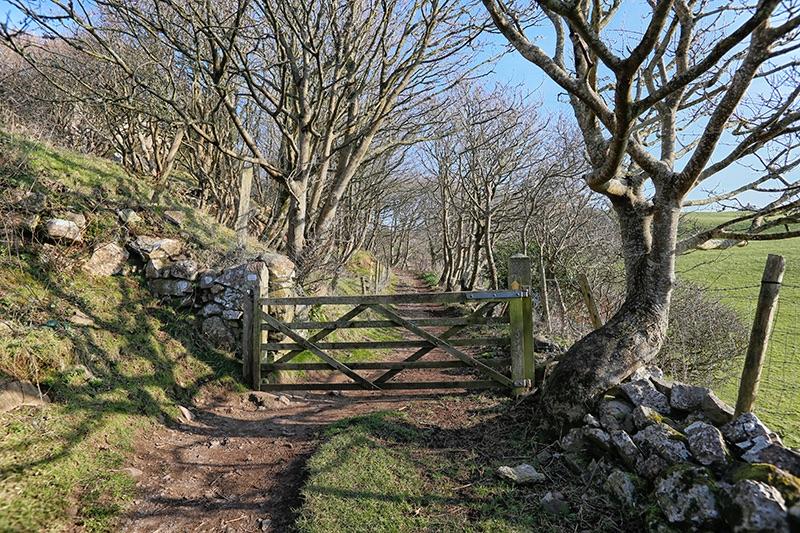 Gower Gate