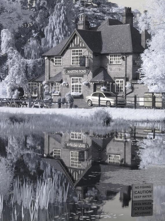 Martins Pond 01