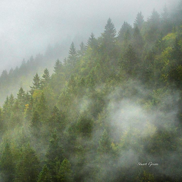 Savoie Mist