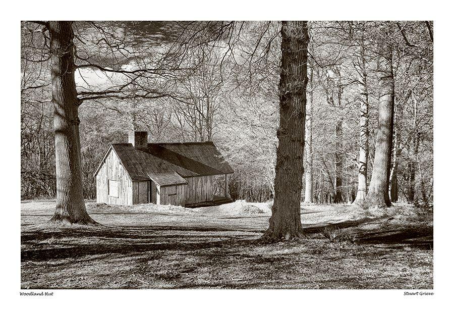 The Hut at Ashridge