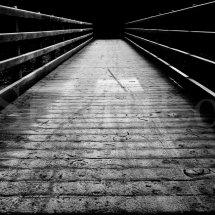 Forest Frost Bridge