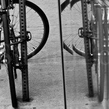 Cycle Reflect