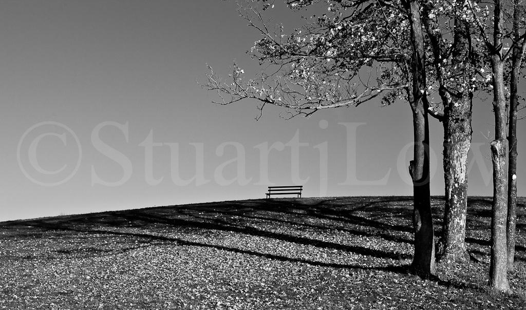 Autumn Bench