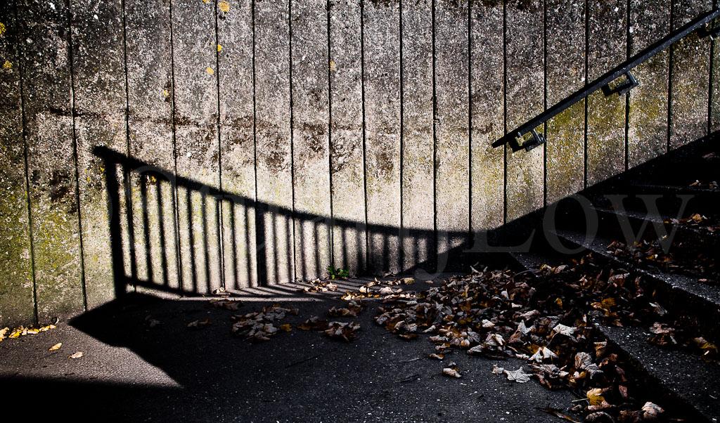 Shadows & Steps