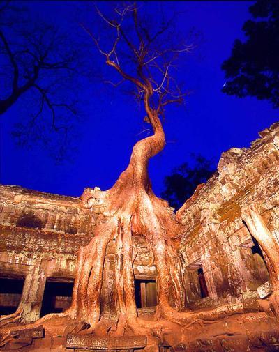 Angkor Cambodia