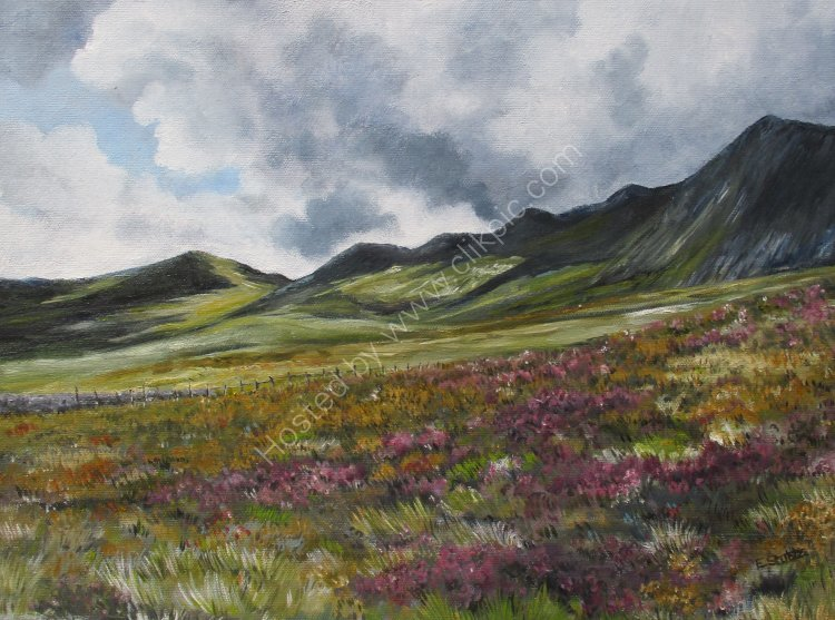 Cadair Idris (sold)