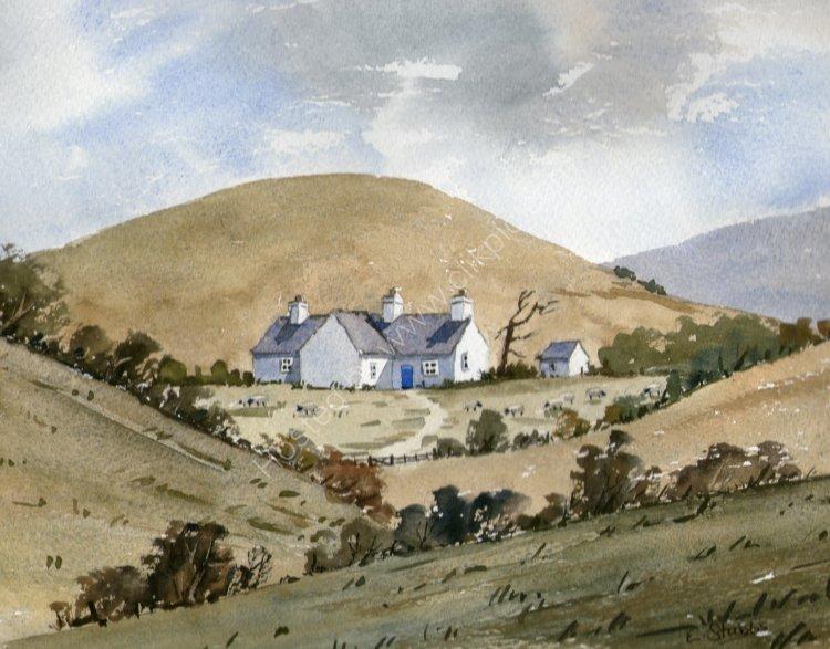 Cottage on Mynydd Anelog