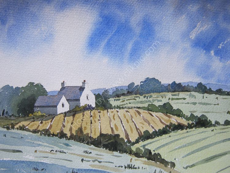 Cottage on The Llyn Peninsula (nfs)