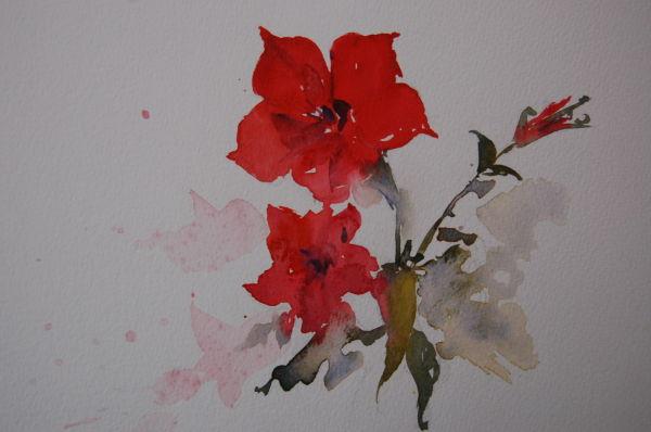 red flower (NFS)