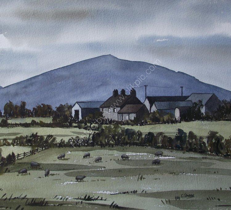 Farm below Mynydd Anelog