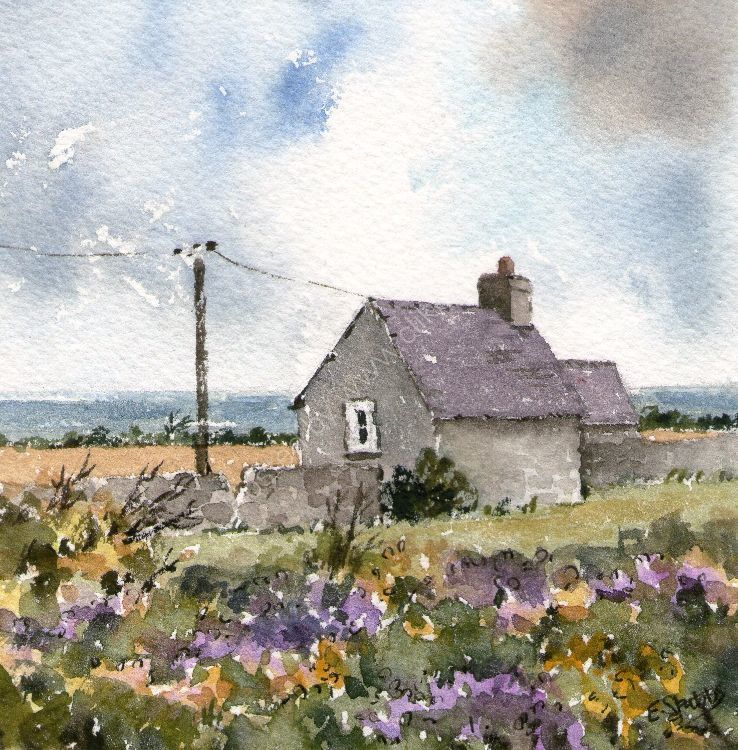 Cottage overlooking Porth Neigwl. (sold)