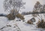 Sika deer in the snow (sold)