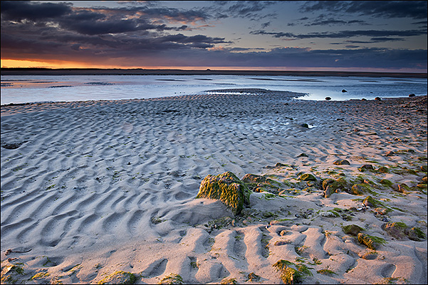 Last light over Budle bay