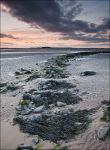 Budle Bay at dusk