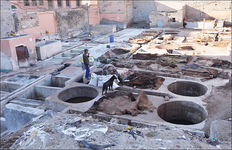 The Tanneries, Marrakech