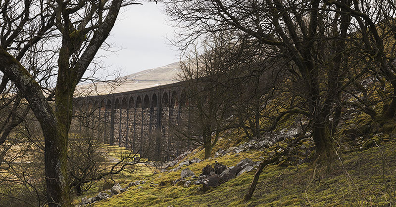 Beneath Ribblehead Viaduct