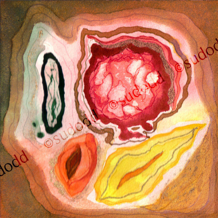 400 -Germination Flora-Seeds-1