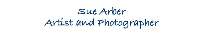 Sue Arber Artist and Photographer