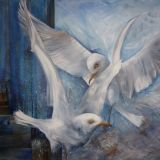 Wells - Bickering seagulls