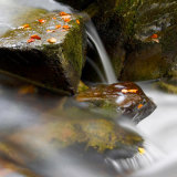 Image 2 Autumn Falls