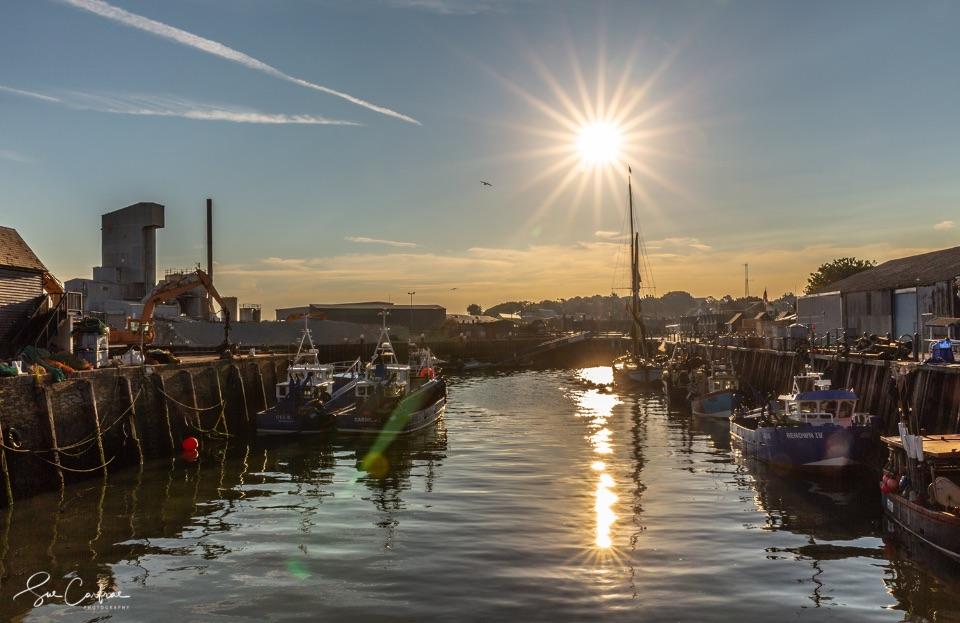 Morning Light, Whitstable Harbour