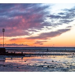 The bait digger at Sundown, Whitstable