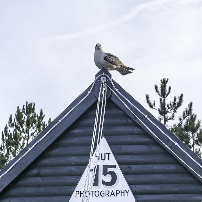 Hut 15 Whitstable