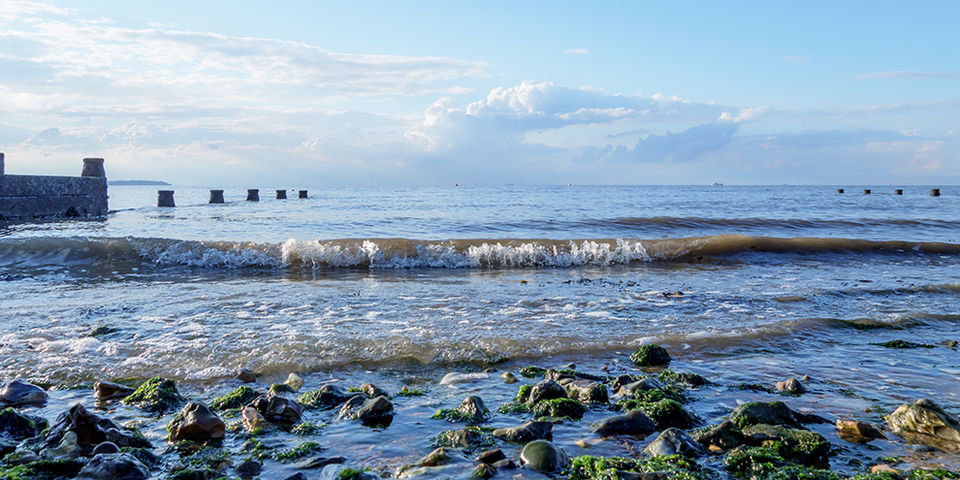 IncomingTide, Whitstable