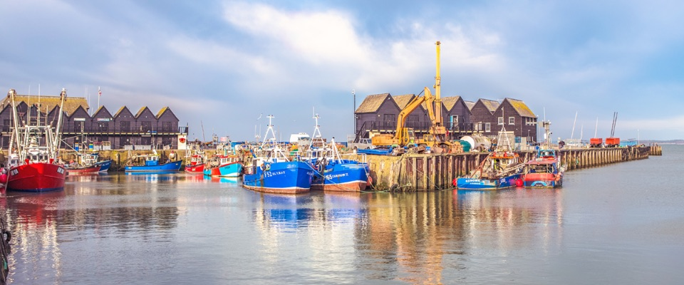 Summer Harbour, Whitstable