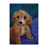 Spoodle Puppy Painting