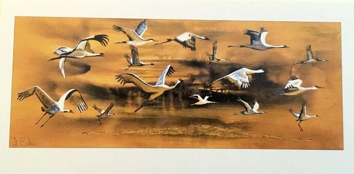 Crane Spotting single card £2.50