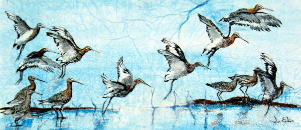 Lift Off  watercolour on tissue