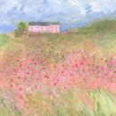 Poppy front garden