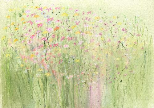 Meadow days